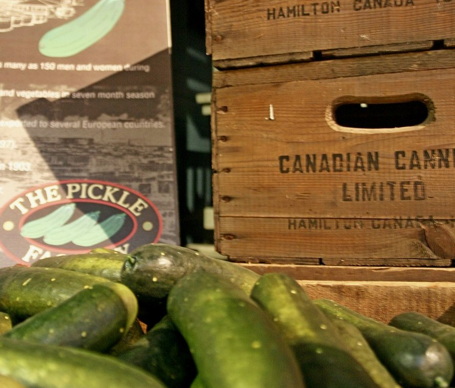 Old wooden boxes and fresh cucumbers