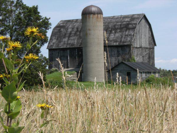 Townsend Township Barn