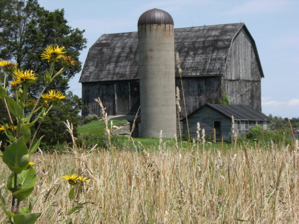 Townsend Township Barn
